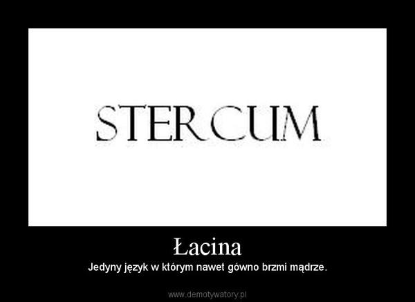 łacina Demotywatorypl