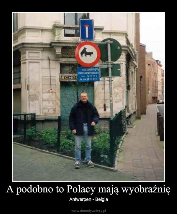 A podobno to Polacy mają wyobraźnię – Antwerpen - Belgia