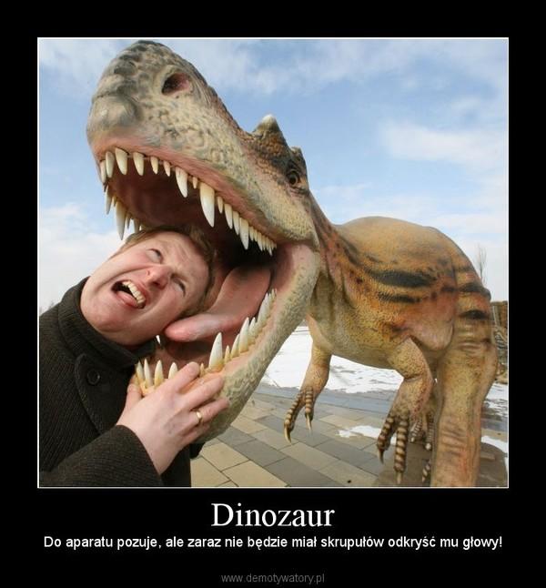 Dinozaur – Do aparatu pozuje, ale zaraz nie będzie miał skrupułów odkryść mu głowy!