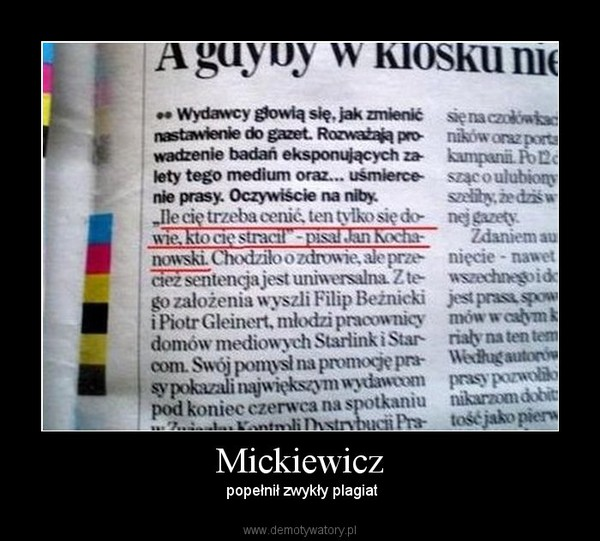 Mickiewicz Demotywatorypl