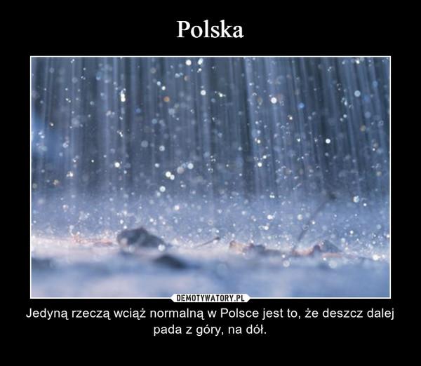 – Jedyną rzeczą wciąż normalną w Polsce jest to, że deszcz dalej pada z góry, na dół.