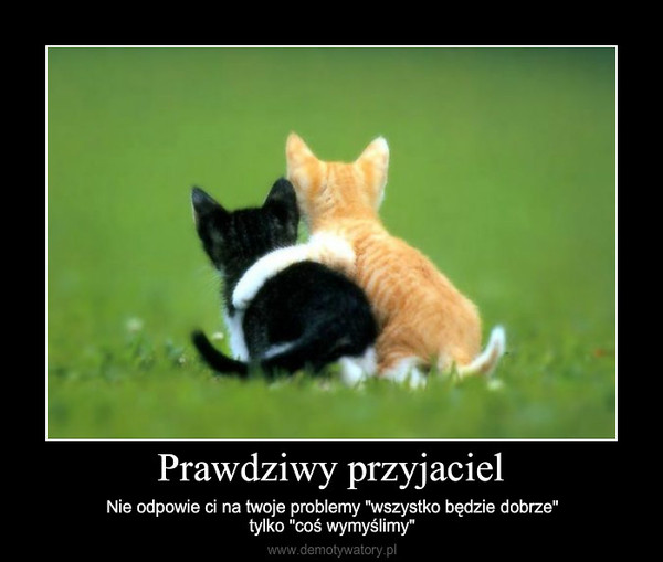 """Prawdziwy przyjaciel – Nie odpowie ci na twoje problemy """"wszystko będzie dobrze""""tylko """"coś wymyślimy"""""""