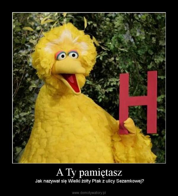 A Ty pamiętasz – Jak nazywał się Wielki żółty Ptak z ulicy Sezamkowej?