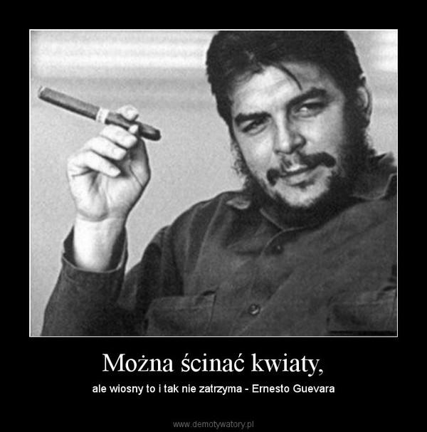 Można ścinać kwiaty, – ale wiosny to i tak nie zatrzyma - Ernesto Guevara
