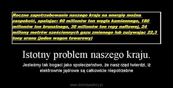 Istotny problem naszego kraju. – Jesteśmy tak bogaci jako społeczeństwo, że nasz rząd twierdzi, iż elektrownie jądrowe są całkowicie niepotrzebne