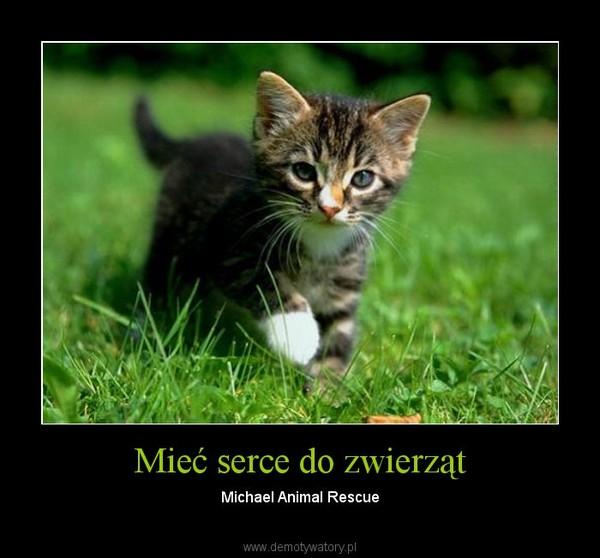 Mieć serce do zwierząt – Michael Animal Rescue
