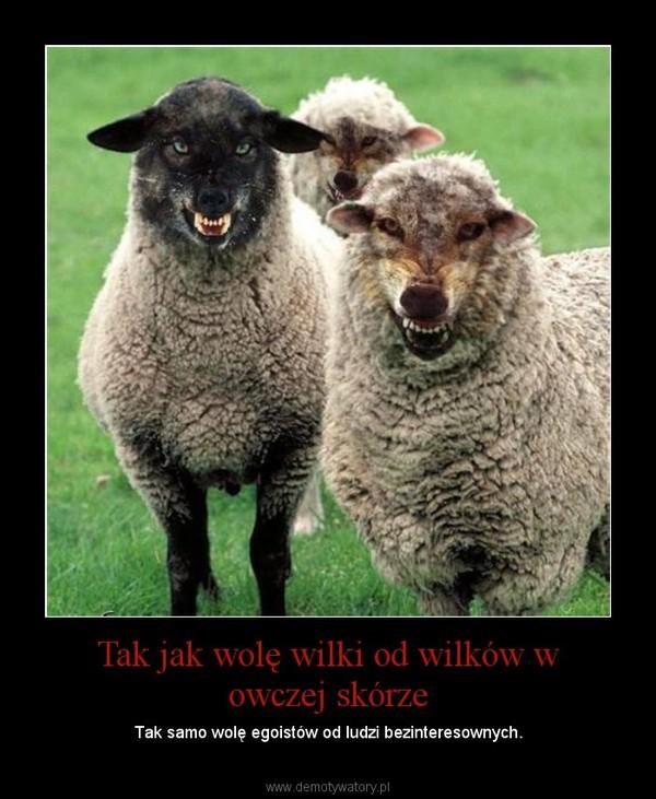 Tak jak wolę wilki od wilków w owczej skórze – Tak samo wolę egoistów od ludzi bezinteresownych.