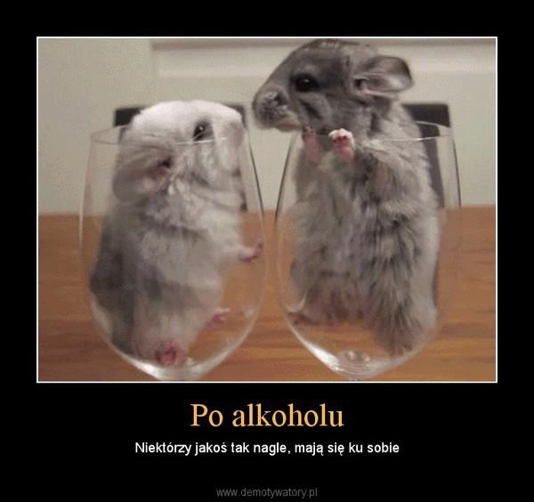 Po alkoholu – Niektórzy jakoś tak nagle, mają się ku sobie