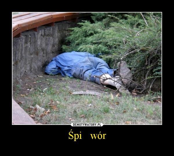 Śpi   wór –