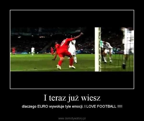 I teraz ju wiesz demotywatory i teraz ju wiesz dlaczego euro wywouje tyle emocji i love football voltagebd Image collections