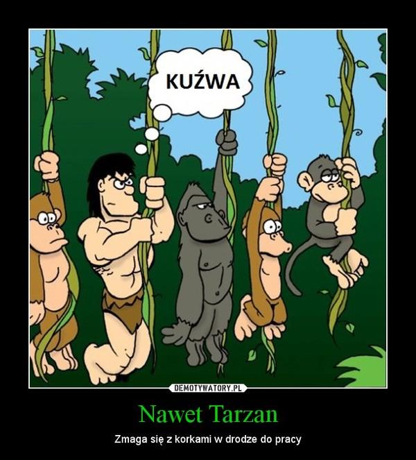 Nawet Tarzan – Zmaga się z korkami w drodze do pracy