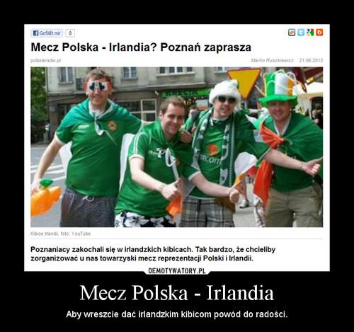 Mecz Polska - Irlandia