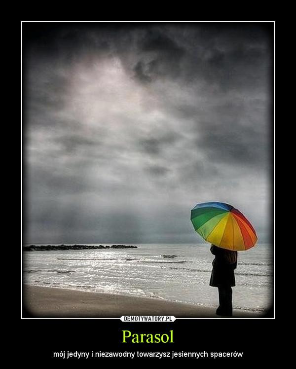 Parasol – mój jedyny i niezawodny towarzysz jesiennych spacerów