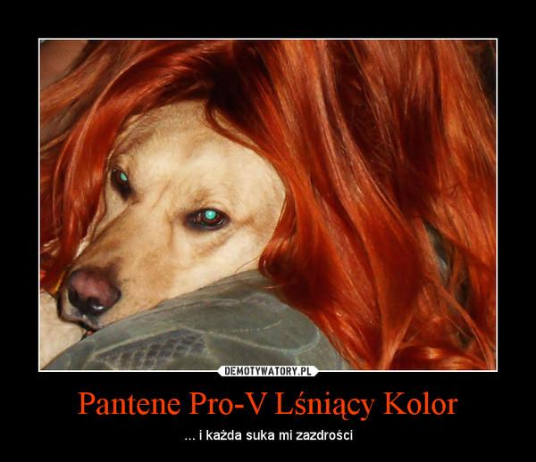 Pantene Pro-V Lśniący Kolor – ... i każda suka mi zazdrości