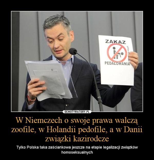 d144e3696 W Niemczech o swoje prawa walczą zoofile, w Holandii pedofile, a w Danii  związki kazirodcze