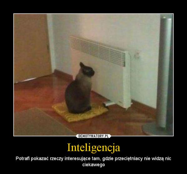 Inteligencja – Potrafi pokazać rzeczy interesujące tam, gdzie przeciętniacy nie widzą nic ciekawego