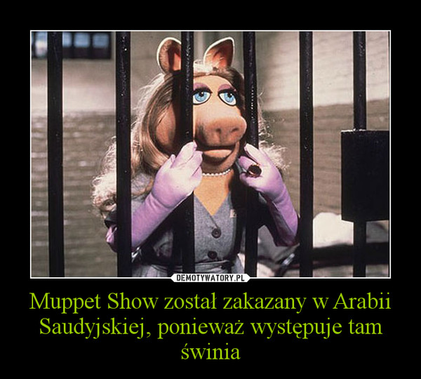 Muppet Show został zakazany w Arabii Saudyjskiej, ponieważ występuje tam świnia –