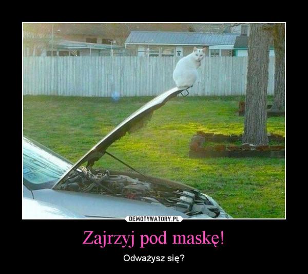 Zajrzyj pod maskę! – Odważysz się?