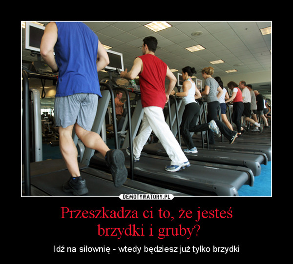 Przeszkadza ci to, że jesteś brzydki i gruby? – Idź na siłownię - wtedy będziesz już tylko brzydki