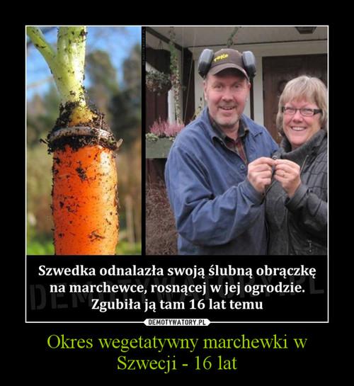 Okres wegetatywny marchewki w Szwecji - 16 lat