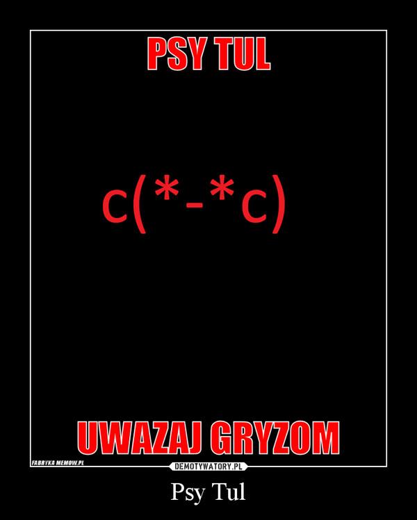 Psy Tul