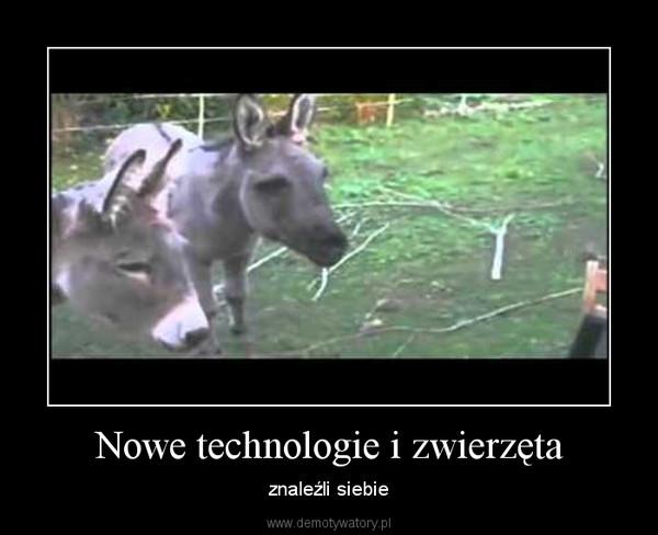 Nowe technologie i zwierzęta – znaleźli siebie