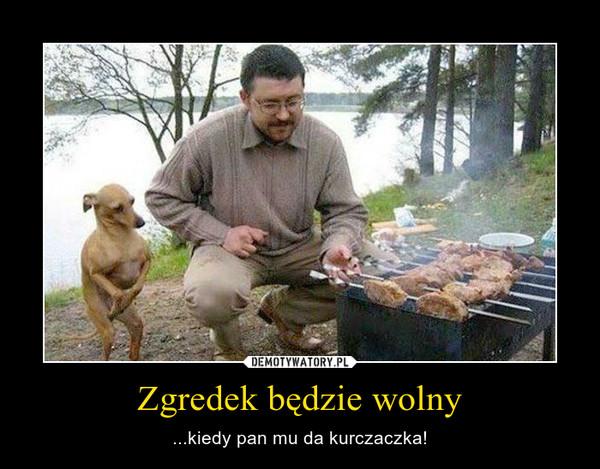 Zgredek będzie wolny – ...kiedy pan mu da kurczaczka!