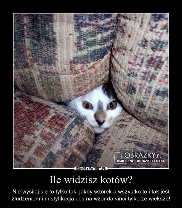 Ile widzisz kotów? – Nie wysilaj się to tylko taki jakby wzorek a wszystko to i tak jest zludzeniem i mistyfikacja cos na wzor da vinci tylko ze wieksze!