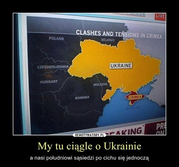 My tu ciągle o Ukrainie – a nasi południowi sąsiedzi po cichu się jednoczą