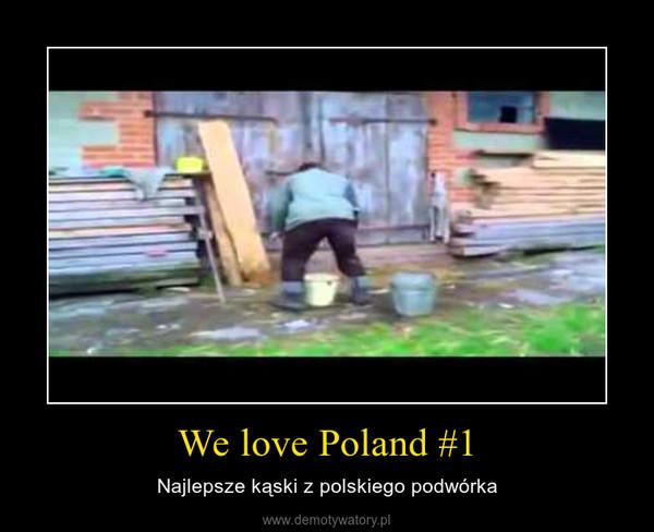 We love Poland #1 – Najlepsze kąski z polskiego podwórka