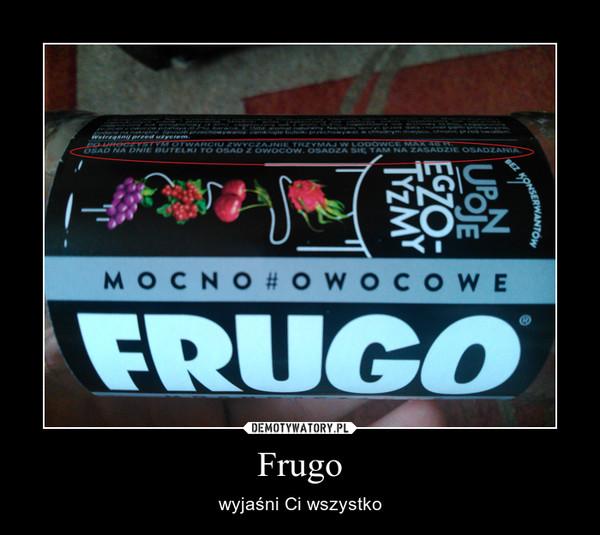Frugo – wyjaśni Ci wszystko
