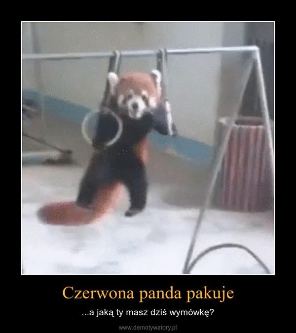 Czerwona panda pakuje – ...a jaką ty masz dziś wymówkę?