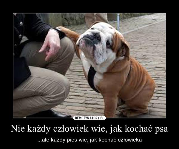 Nie każdy człowiek wie, jak kochać psa – ...ale każdy pies wie, jak kochać człowieka