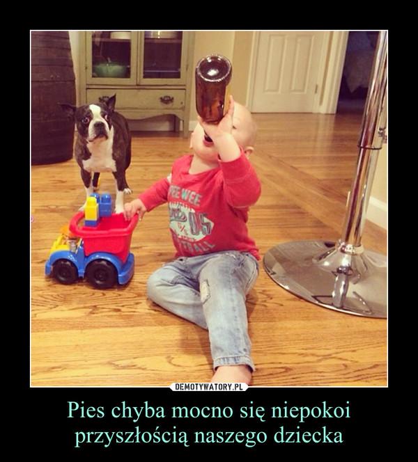 Pies chyba mocno się niepokoi przyszłością naszego dziecka –