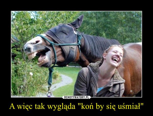 """A więc tak wygląda """"koń by się uśmiał"""" –"""