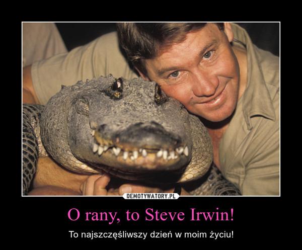 O rany, to Steve Irwin! – To najszczęśliwszy dzień w moim życiu!