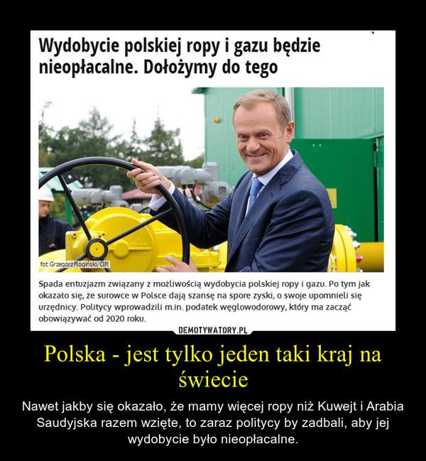 Polska - jest tylko jeden taki kraj na świecie – Nawet jakby się okazało, że mamy więcej ropy niż Kuwejt i Arabia Saudyjska razem wzięte, to zaraz politycy by zadbali, aby jej wydobycie było nieopłacalne.