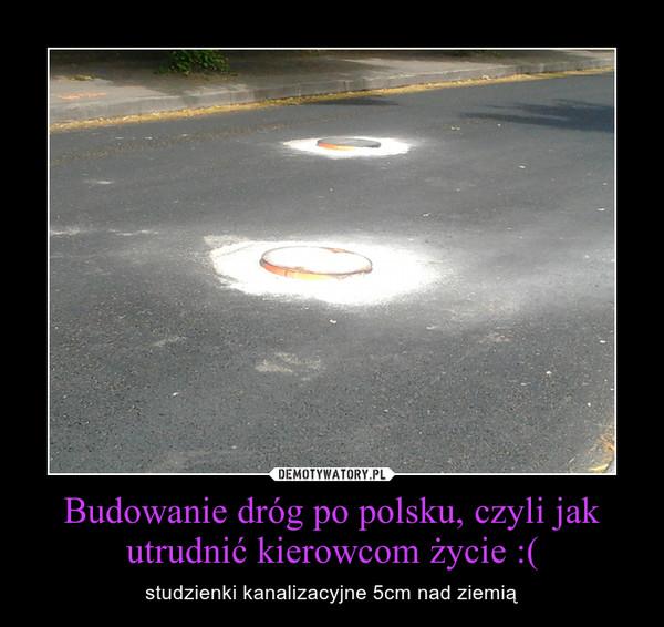 Budowanie dróg po polsku, czyli jak utrudnić kierowcom życie :( – studzienki kanalizacyjne 5cm nad ziemią