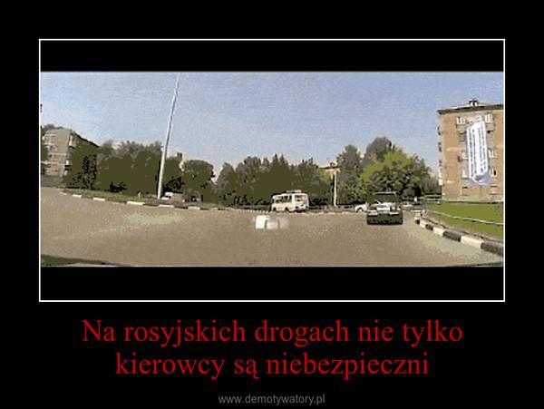 Na rosyjskich drogach nie tylko kierowcy są niebezpieczni –