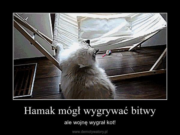 Hamak mógł wygrywać bitwy – ale wojnę wygrał kot!