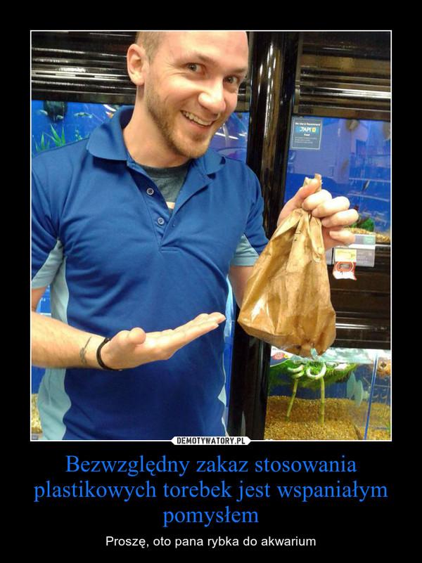 Bezwzględny zakaz stosowania plastikowych torebek jest wspaniałym pomysłem – Proszę, oto pana rybka do akwarium