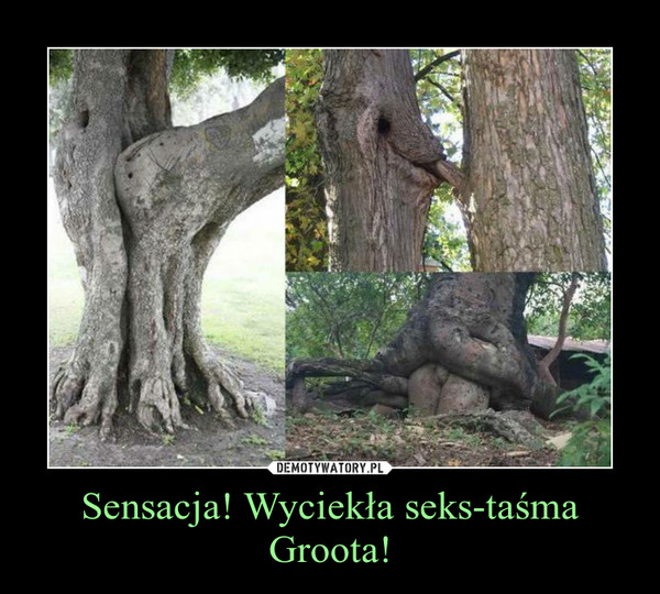 Sensacja! Wyciekła seks-taśma Groota! –