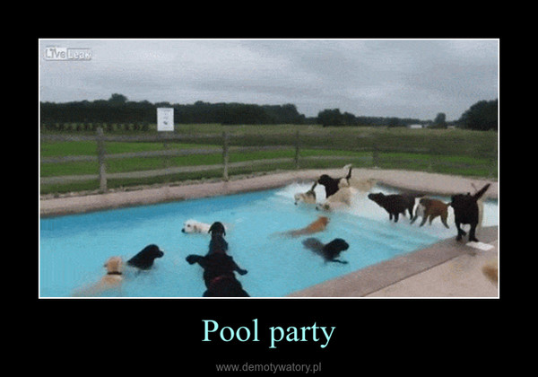 Pool party –