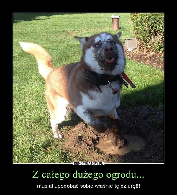Z całego dużego ogrodu... – musiał upodobać sobie właśnie tę dziurę!!!