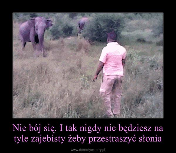 Nie bój się. I tak nigdy nie będziesz na tyle zajebisty żeby przestraszyć słonia –