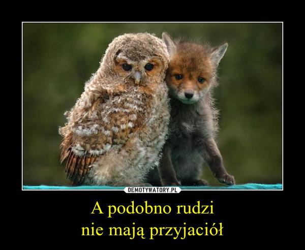 A podobno rudzinie mają przyjaciół –