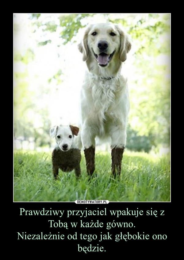 Prawdziwy przyjaciel wpakuje się z Tobą w każde gówno.Niezależnie od tego jak głębokie ono będzie. –