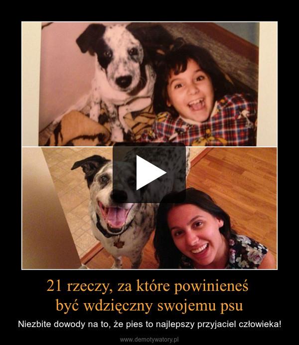 21 rzeczy, za które powinieneś być wdzięczny swojemu psu – Niezbite dowody na to, że pies to najlepszy przyjaciel człowieka!
