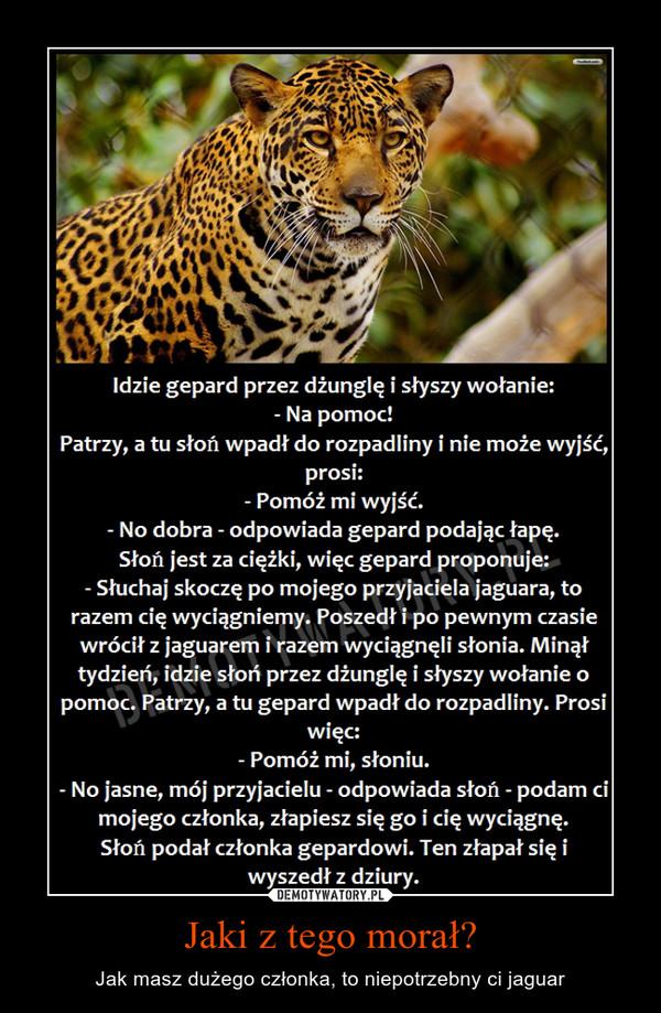 Jaki z tego morał? – Jak masz dużego członka, to niepotrzebny ci jaguar