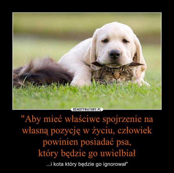 """""""Aby mieć właściwe spojrzenie na własną pozycję w życiu, człowiek powinien posiadać psa,który będzie go uwielbiał – ...i kota który będzie go ignorował"""""""
